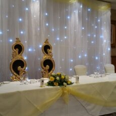 Wedding Star Curtain Backdrop